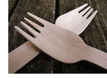 Disposable Knife / Fork